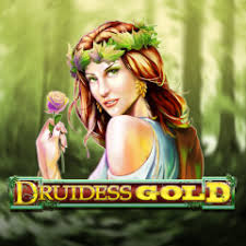 Slot Druidess Gold Top 20 Material Online